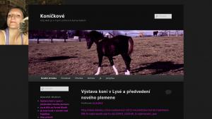 náhled webu cinzano.cekuj.net